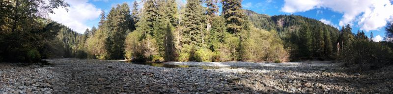 pano of the riverbed where we expected to see the bears. click for big