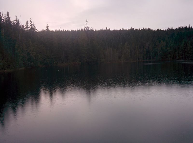 Alligator lake.
